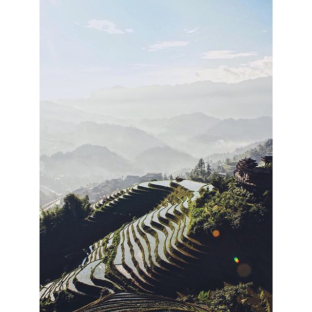 The Longji Rice Terraces, Guangxi Province, China. . All the rumours are true. Guilin, Longji, Yangshuo, really are the prettiest parts of China. Endless silver staircases & platoons of forest-filled karst define the landscape. . This trip was extra special as we were joined by our friend & Founder of @flotsamandjetsambags (we've mentioned them before - they make beautiful weekend bags made from recycled plastic). . We spent a happy week hiking terraces and hills, or else messing about in rivers attempted to stay cool. . . . #China #longji #longjiriceterraces #anotherescape #folkmagazine #folkscenery #wearestillwild #visualsofearth #lifeofadventure #allaboutadventure #fadedaesthetics #eclecticshots #discoverearth #modernoutdoors #explorearth #goneoutdoors #thediscoverer #somewheremagazine #exploreourearth #mytinyatlas #exploreobserveshare #stayandwander #allaboutadventure #riceterraces #lightzine #anotherescape #natgeoyourshot