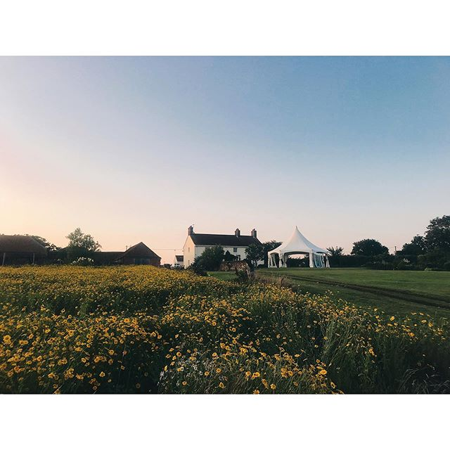 Thurning, Norfolk, UK 🇬🇧 . Who said coming home was hard? (🙄) With green views, wild flowers & balmy weather like this, we're actually not sure there's anywhere better. . We celebrated our good friends' wedding in beautiful English countryside at the weekend. It reminded us what a green and pleasant land this little island really is. . . . #greatbritishsummertime #englishcountryside #wildflowermeadow #norfolk #explorenorfolk #visitengland #beautifulengland #thisisengland #lovegreatbritain #speechlessplaces #darlingescapes #weddingstyle #englishgirl #countrylife #homeandgarden #rurallife #countrygirl #localtravel #travelcreatives #travelblog #stayandwander
