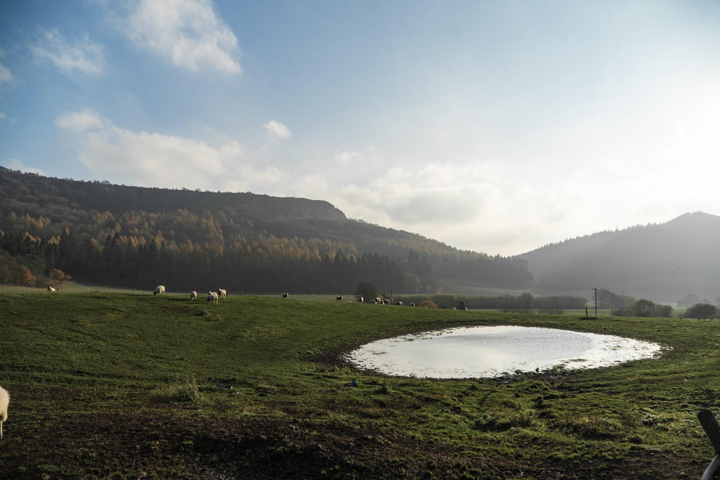 Area of Thirsk 1.jpg