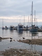 Mill bay views - vancouver island 2018