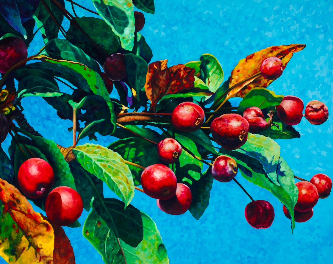 """Crab Apples #1  40"""" h x 30"""" w x 1.5"""" d  oil on wrapped canvas  Available at Gallery Piquel in New Hope, PA"""