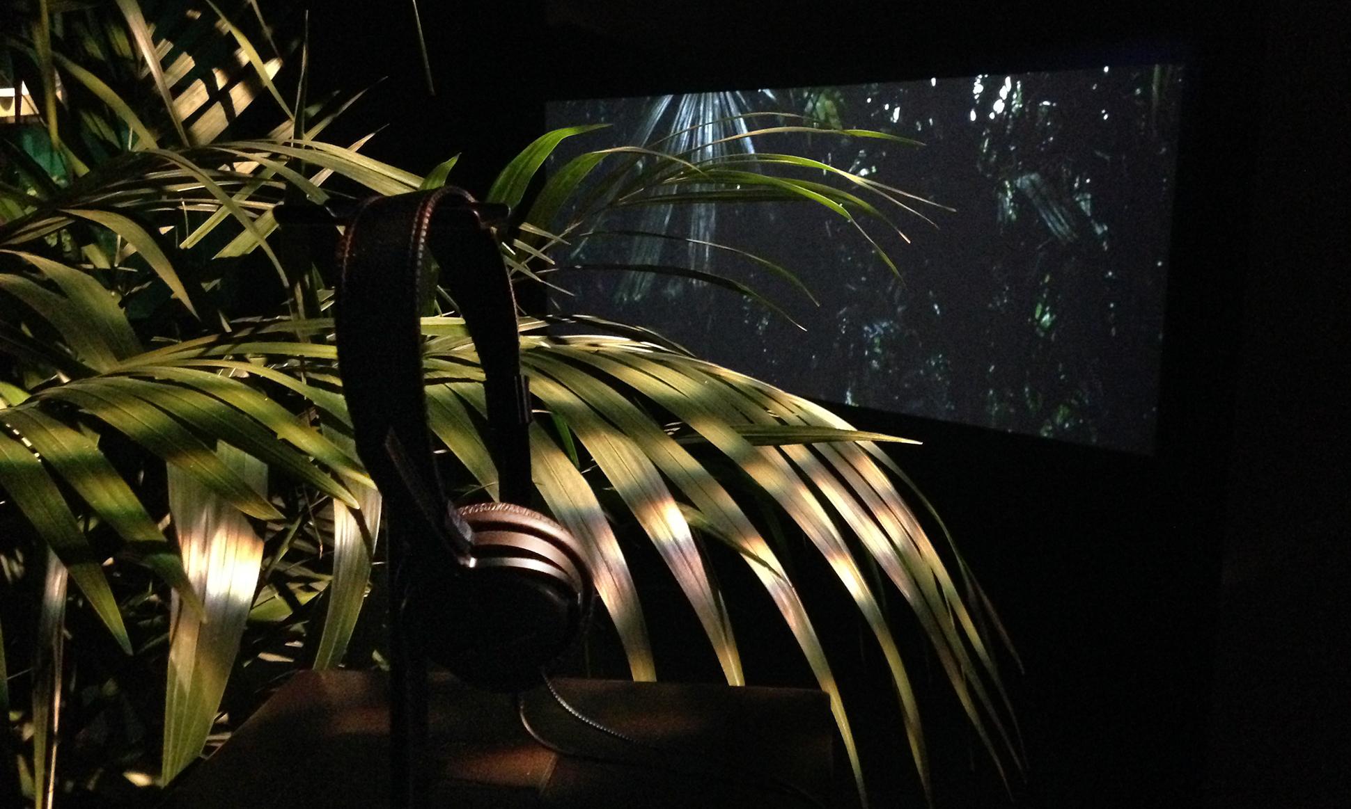 3_palm.jpg