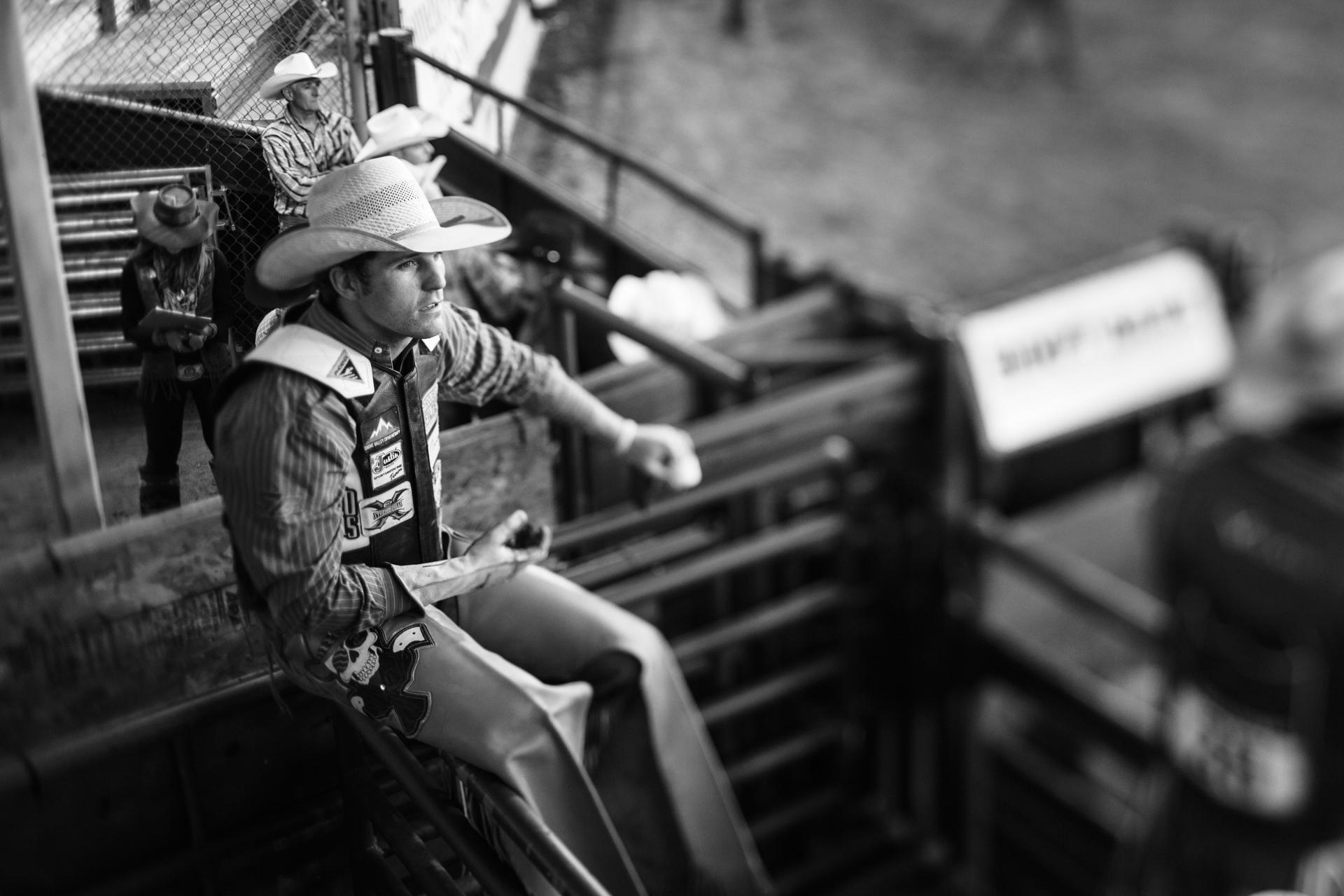 Cattle Drive 15.jpg