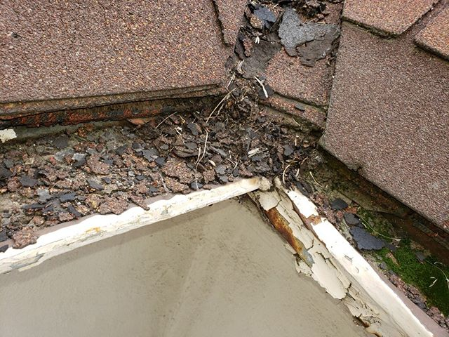 Not gutter issues can be seen in plain sight. This #county resident called #RGG to check their gutters and we cleared the system of unwanted debris. Let Rain Gutter Gurus evaluate your current system and do the same.  Call 424-284-9662 today to speak to a Gutter Guru.