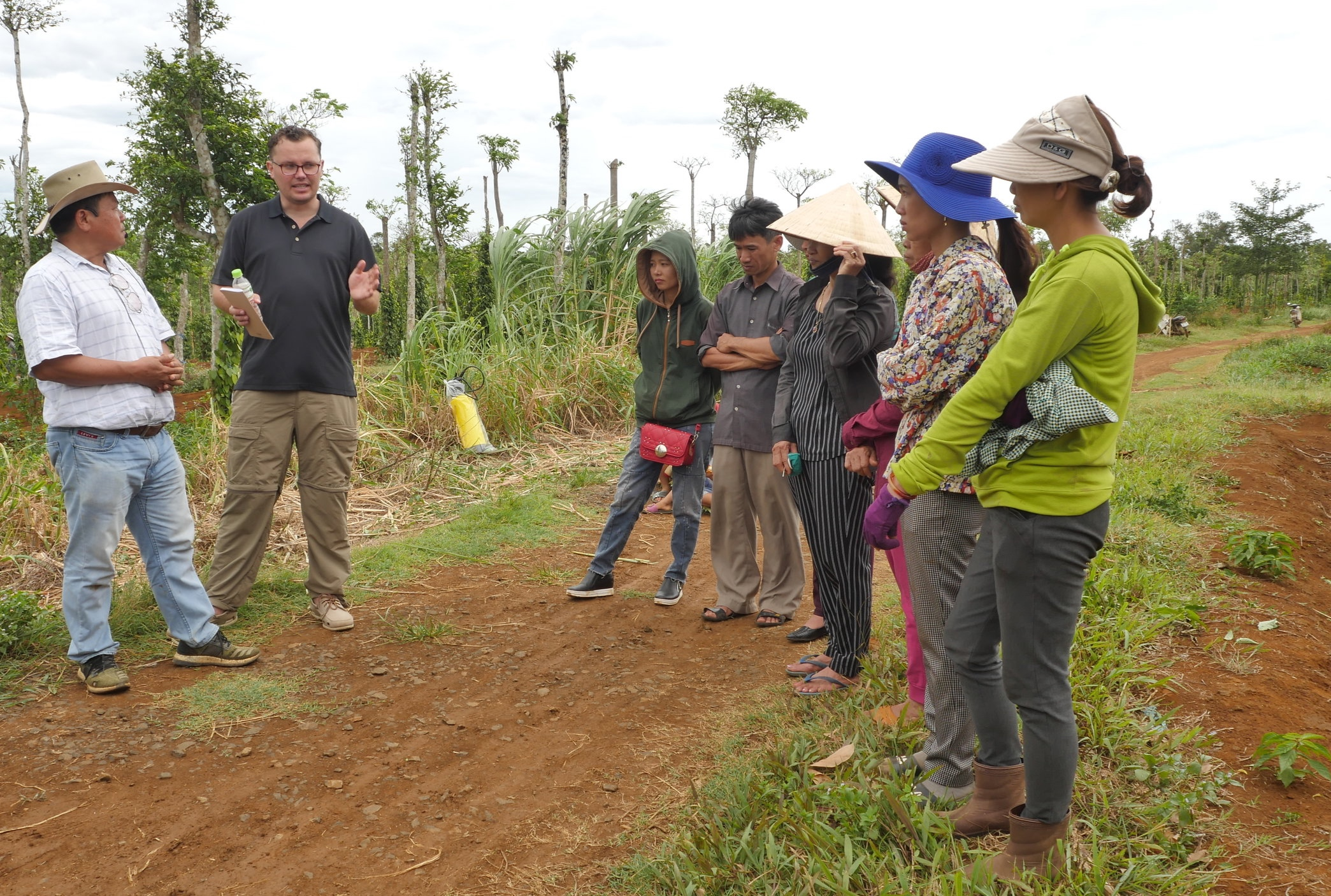 Roots-of-Peace-ROP-agriculture-Vietnam-farmers-training-intercropping-cashew orchard.jpg