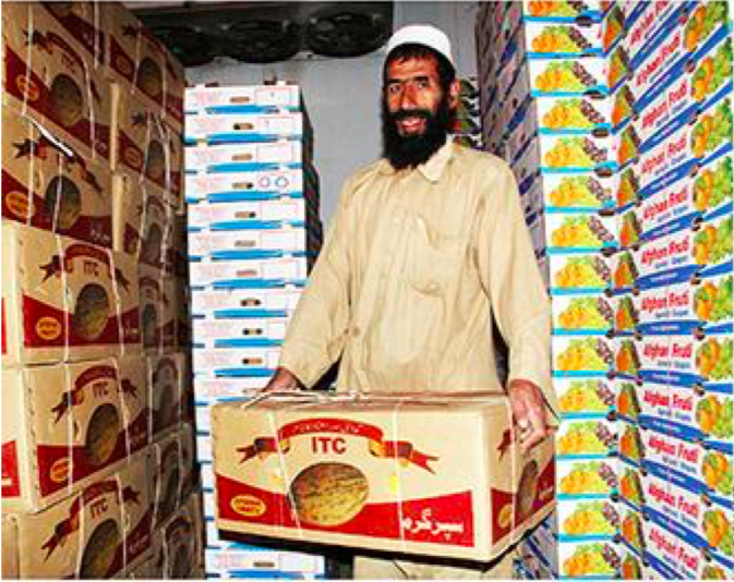 Boosting Exports, one box at a time -