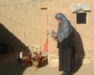 Afghan WomAn Creates Nest Egg -