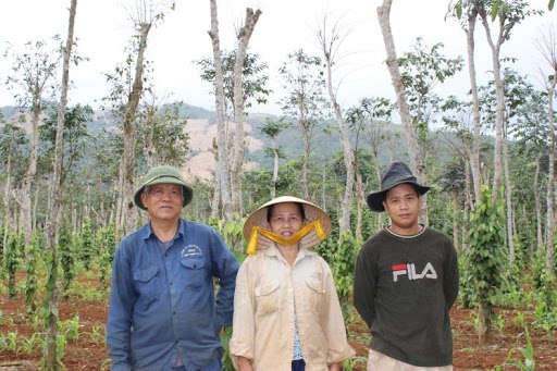 Roots-of-Peace-ROP-Vietnam-farmer-vine-family-black-pepper.jpg