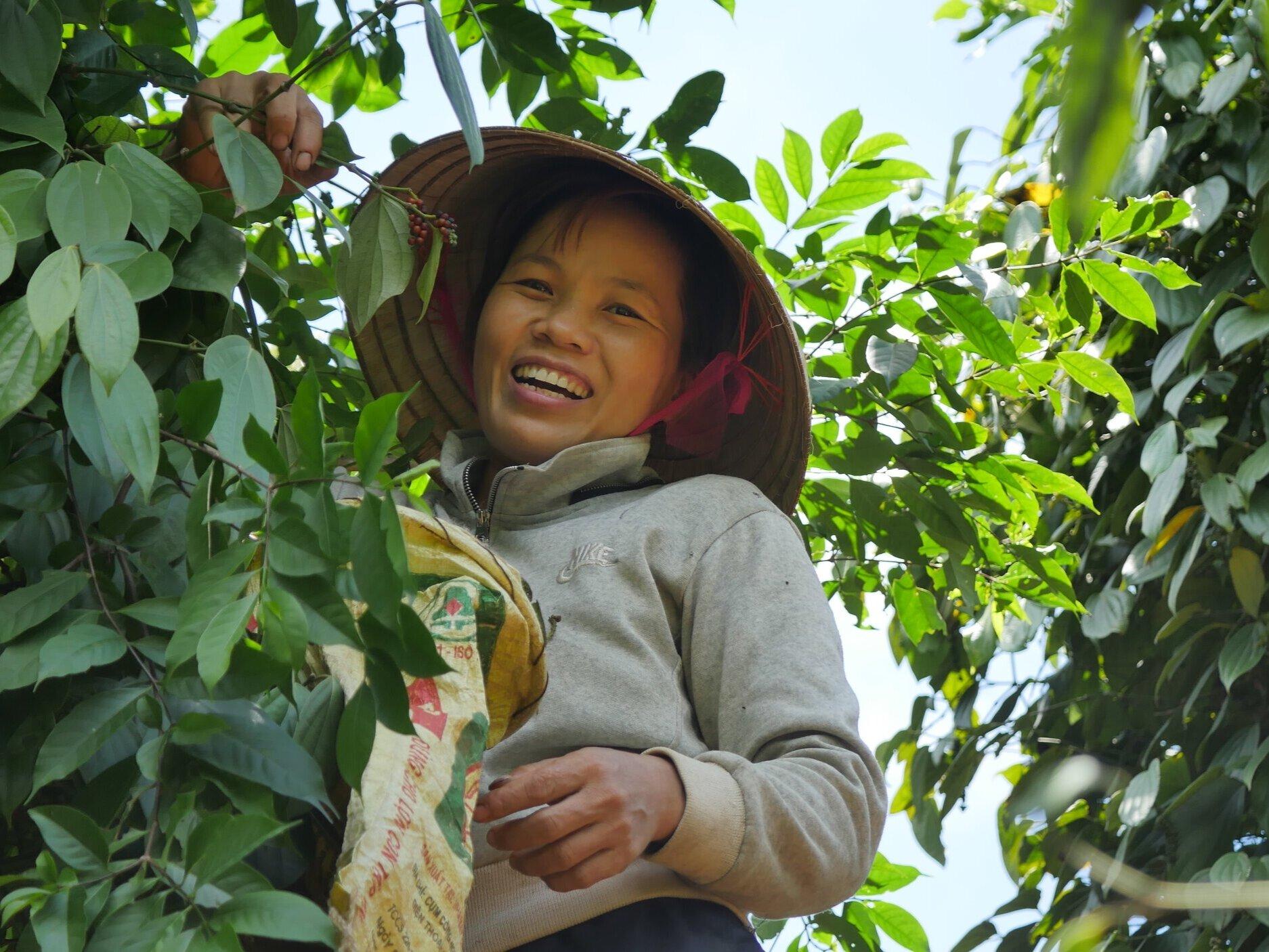 Woman-Farmer-Pepper-Vine-Smile-Vietnam-Roots-of-Peace-ROP