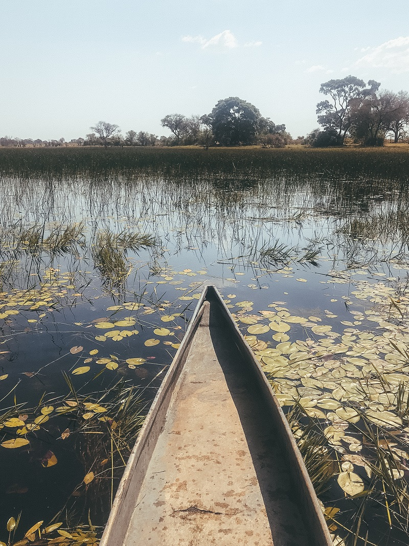 camping-in-okavango-botswana-3.jpg