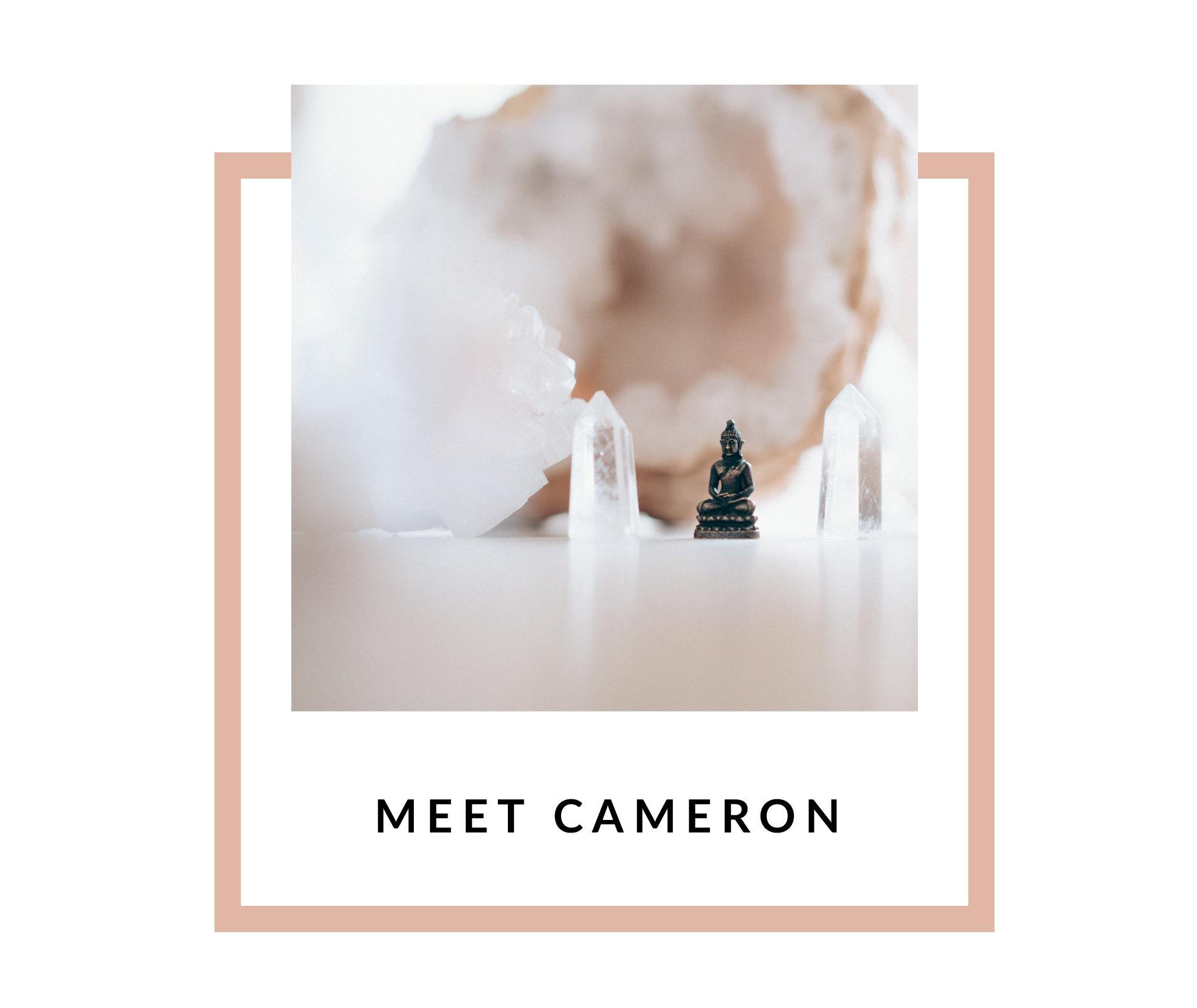 Meet Cameron-03-03.png