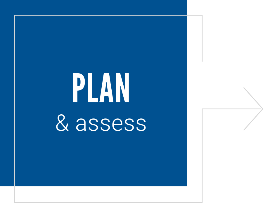 Plan and assess
