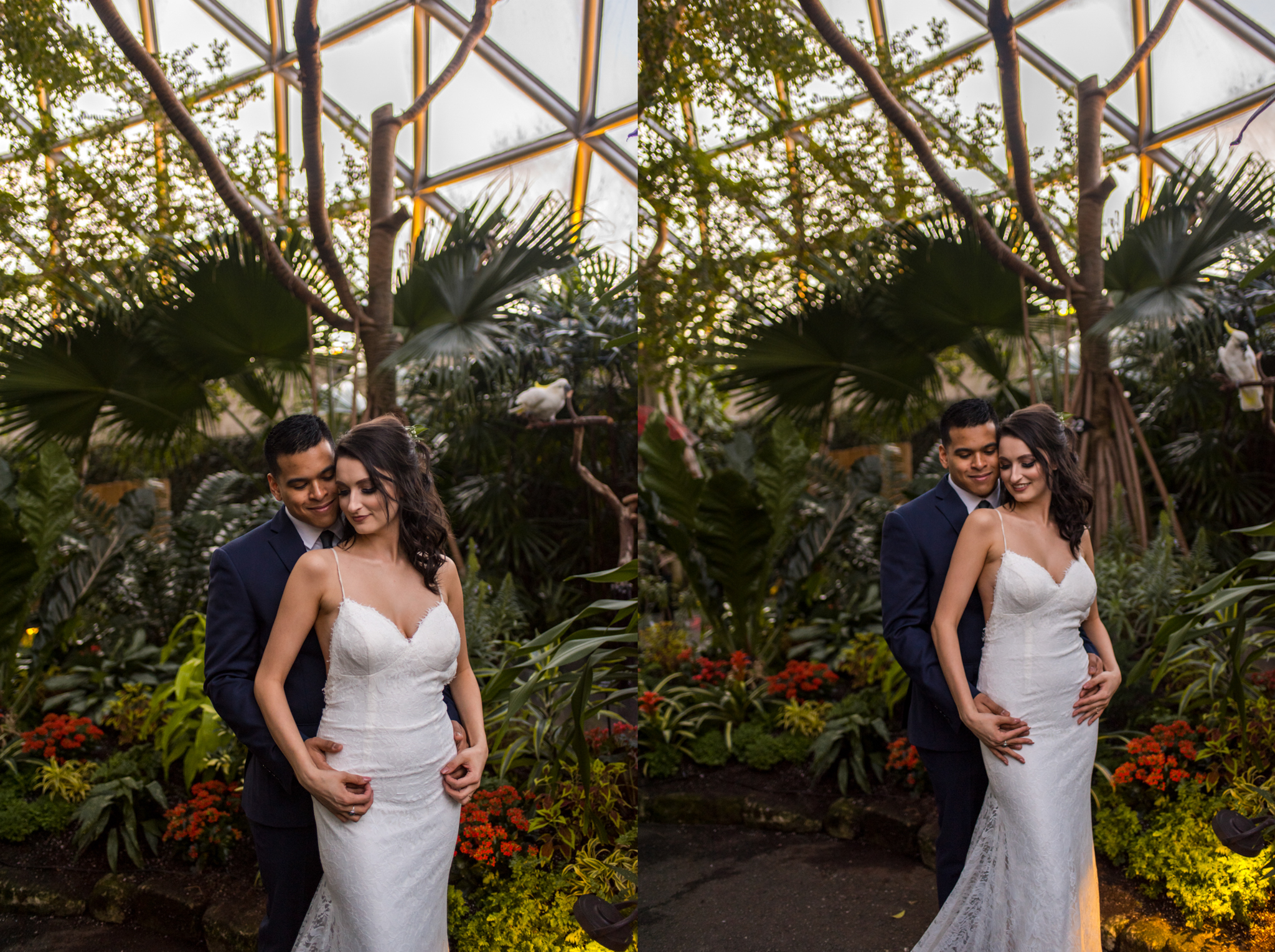 Bride and Groom embrace in Bloedel Conservatory at Queen Elizabeth Park in Vancouver BC