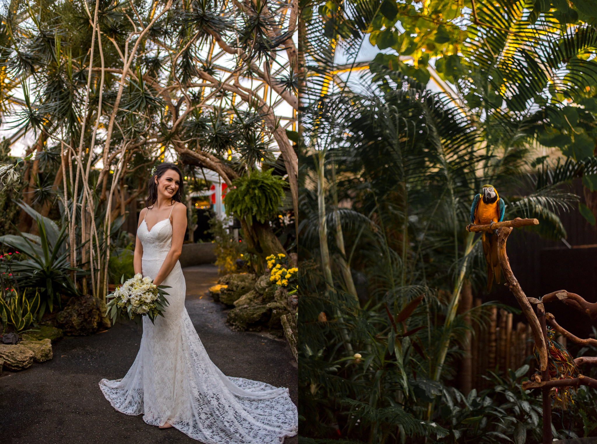 Bride in Bloedel Conservatory in Vancouver BC