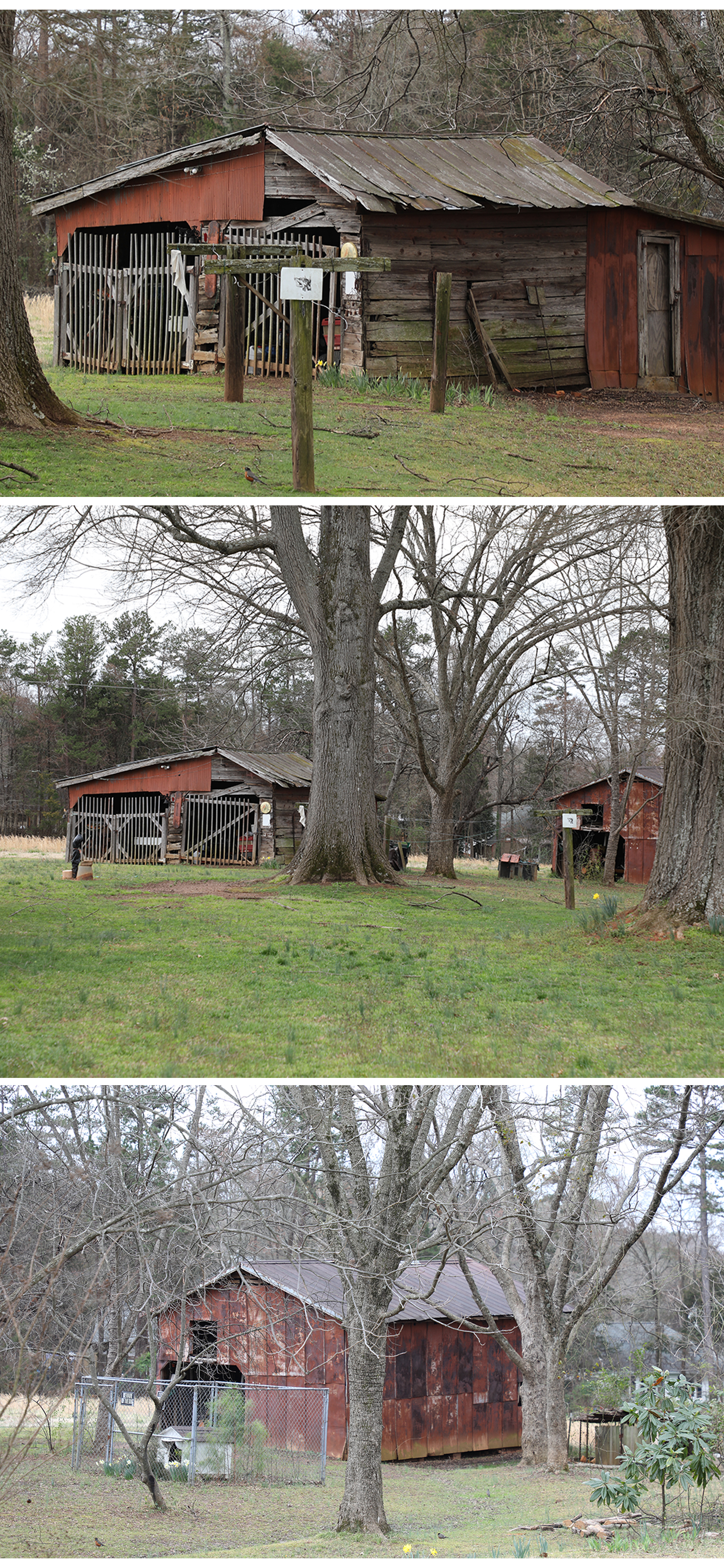 The Helms Farm: This farmland was bought in the 40s from the Stillwell family, originally owned by the Harkeys. The barns were probably built around the same time. -