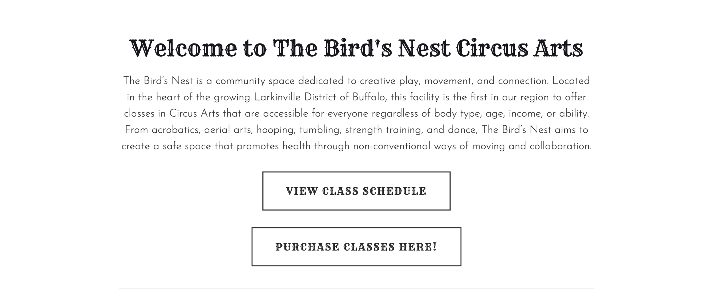 """Landing Page: The Bird's Nest Circus Arts. """"The Bird's Nest is a community space dedicated to creative play, movement, and connection. Located in the heart of the growing Larkinville District of Buffalo, this facility is the first in our region to offer classes in Circus Arts that are accessible for everyone regardless of body type, age, income, or ability. From acrobatics, aerial arts, hooping, tumbling, strength training, and dance, The Bird's Nest aims to create a safe space that promotes health through non-conventional ways of moving and collaboration."""" Button 1: """"VIEW CLASS SCHEDULE."""" Button 2: """"PURCHASE CLASSES HERE!"""""""