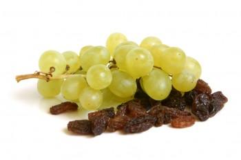grapes-and-raisins-e1374947797793.jpg