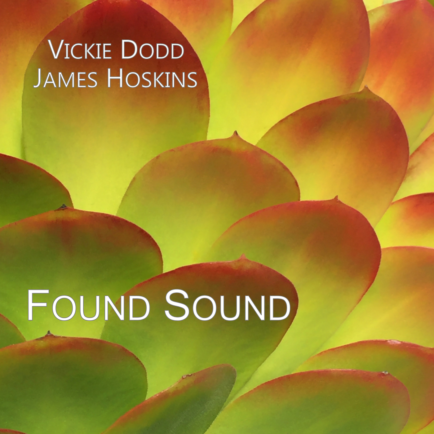 Dodd-Hoskins: Found Sound