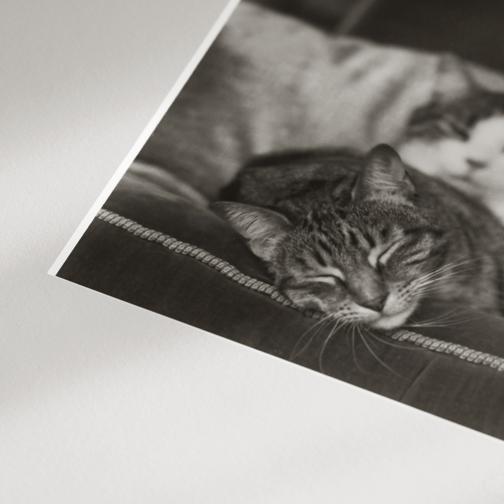 - photograph inside museum mat -