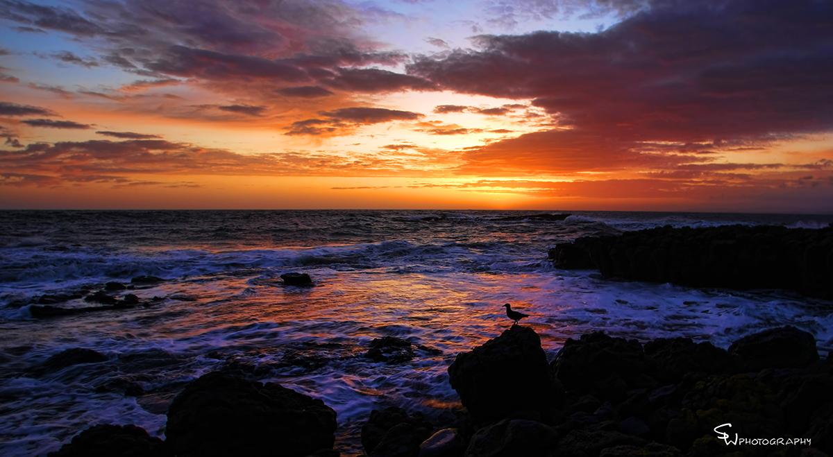 Coles Beach - Devonport