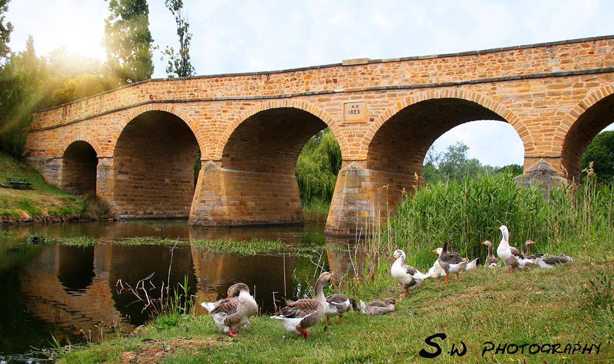 Richmond Bridge - Richmond