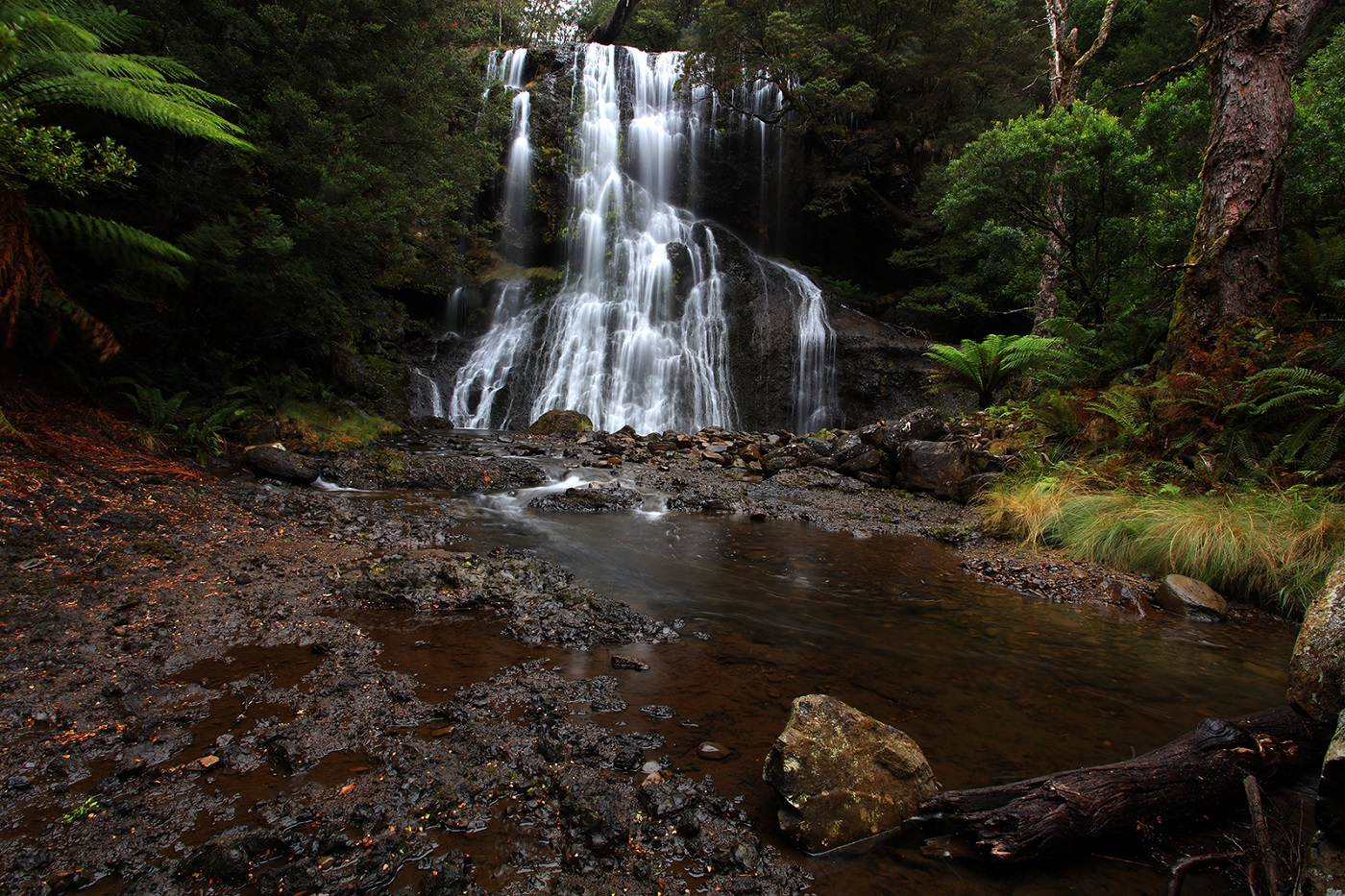 Bridal Veil Falls - Lemonthyme