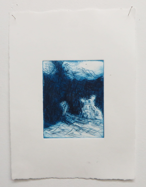 Viking (blue), 2016