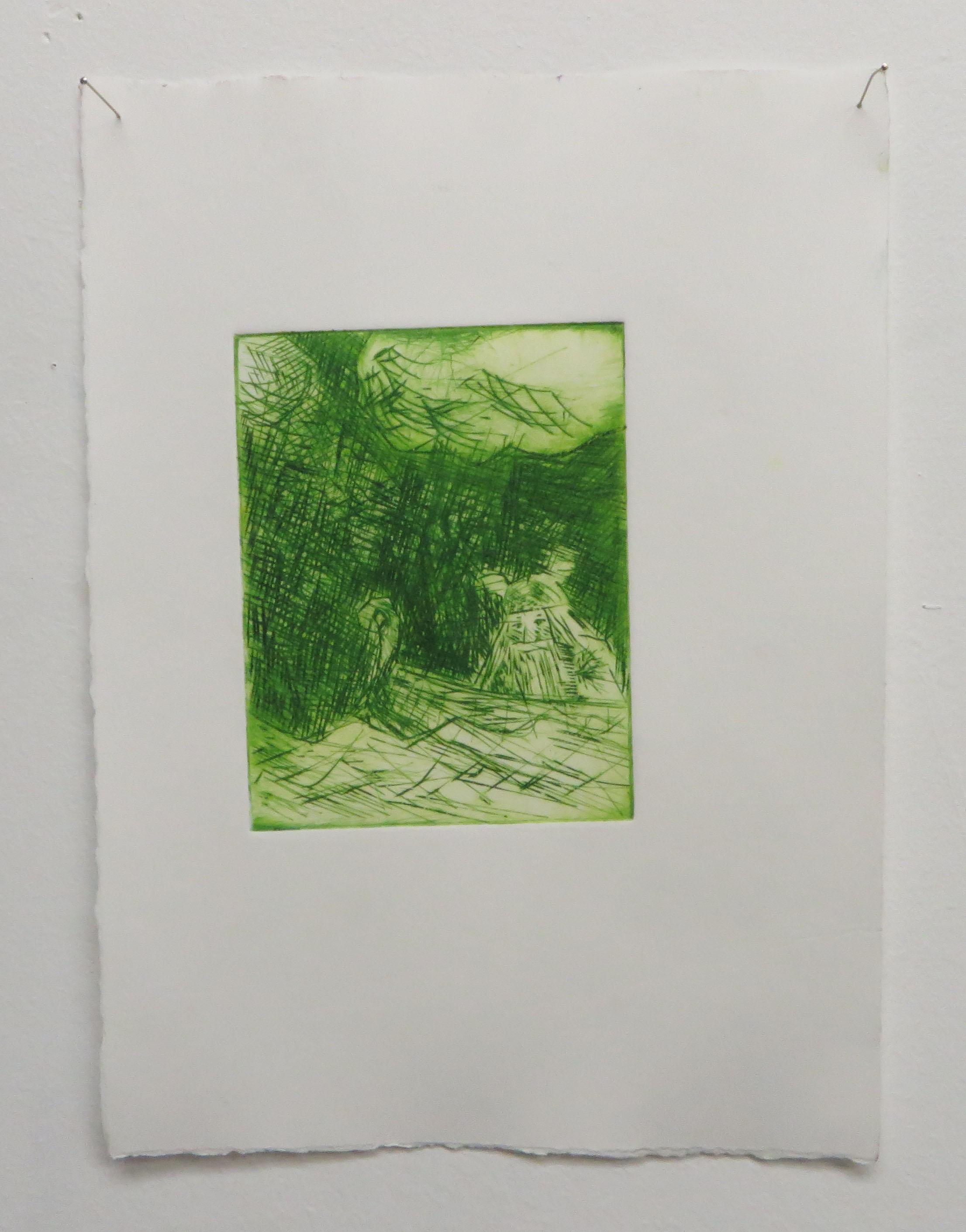 Viking (green), 2016