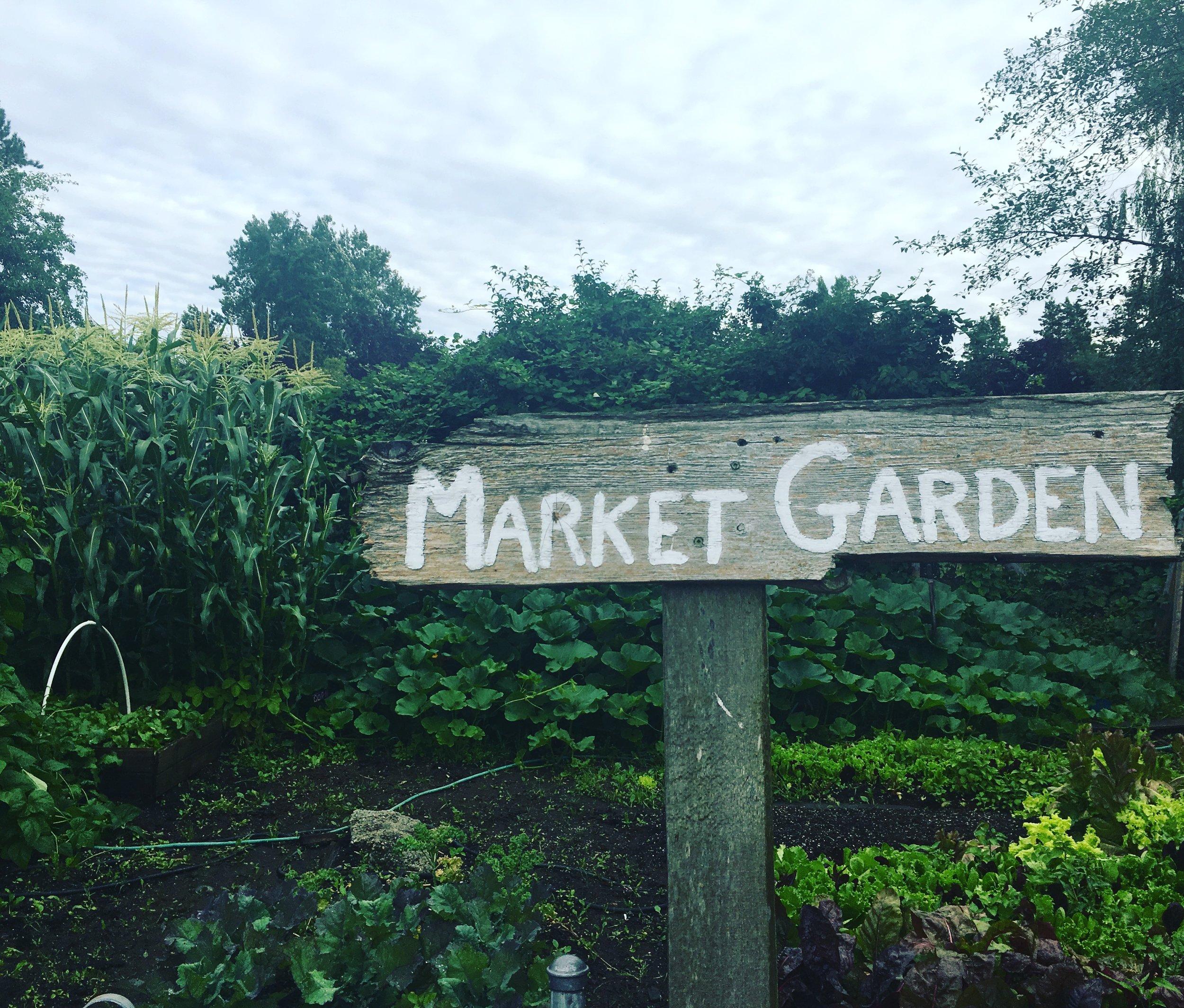Market_Garden_SHF.JPG