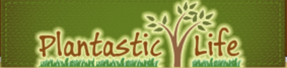 Plantastic Life - Great whole food plant based recipes along with great educational material.