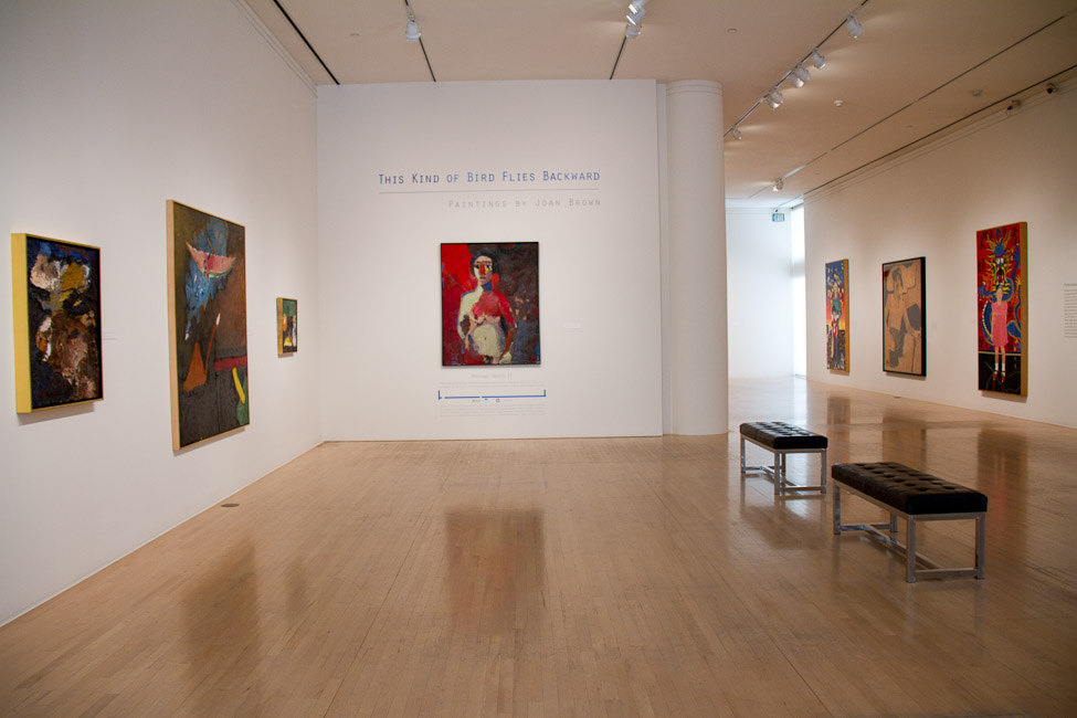 San Jose Museum of Art, San Jose, CA, Joan Brown, This Kind of Bird Flies Backwards, October 14, 2011 – March 11, 2012 12.jpg