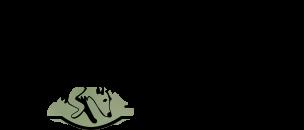 truffle dog logo.png