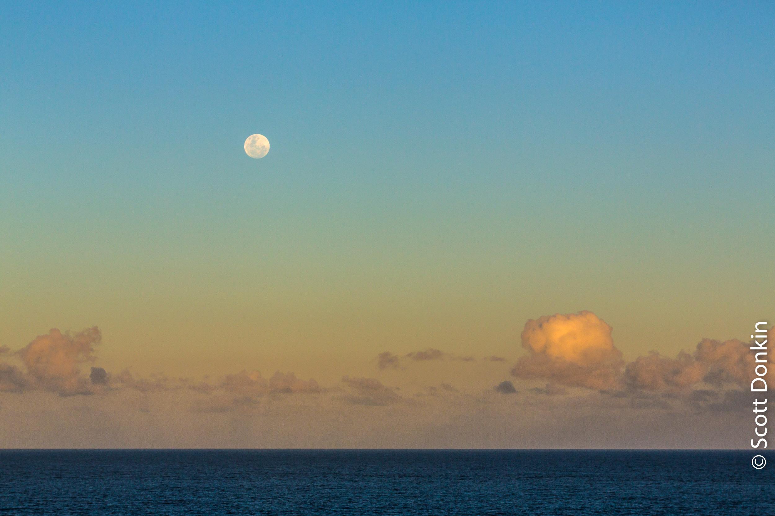 Moonrise. Sufers Paradise, Qld. Dusk, 13 December 2016.