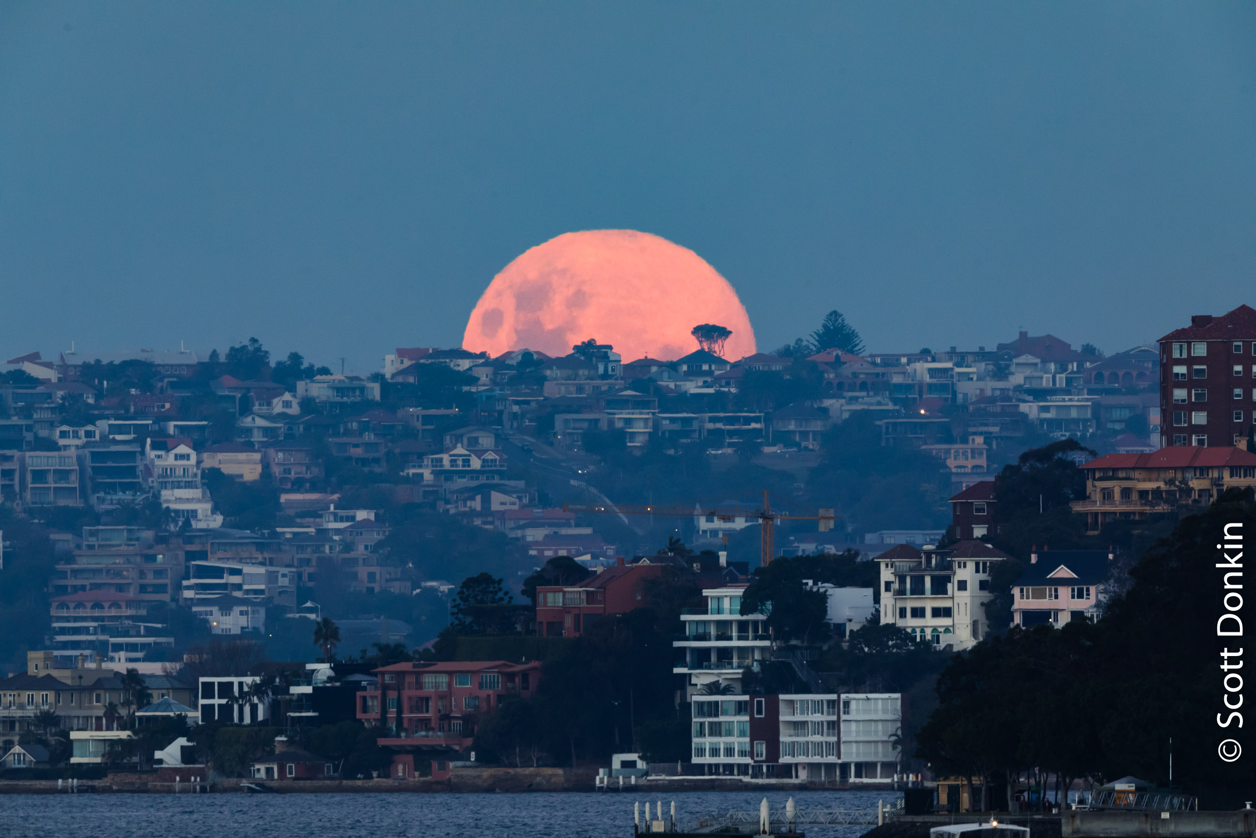 Moonrise over Vaucluse, Sydney at dusk. 29 May 2018.