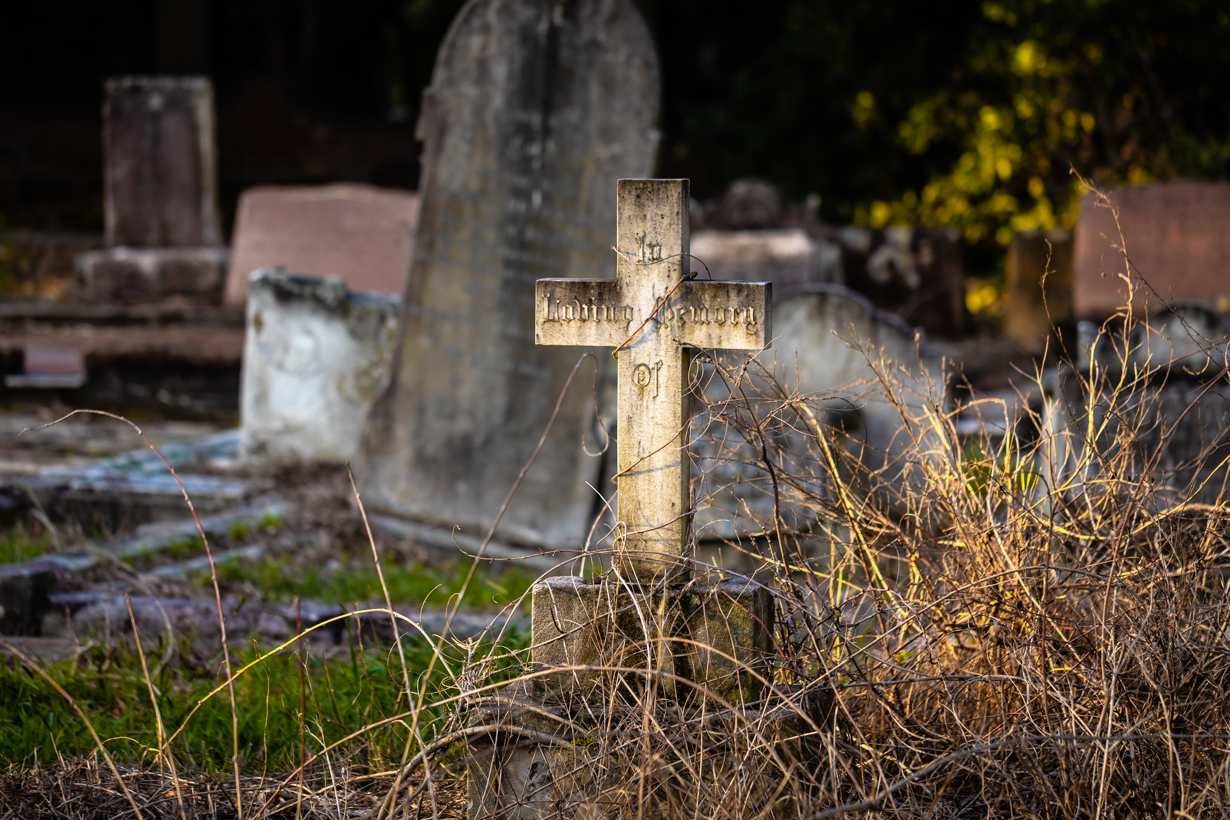 Gore Hill Cemetery, Sydney.