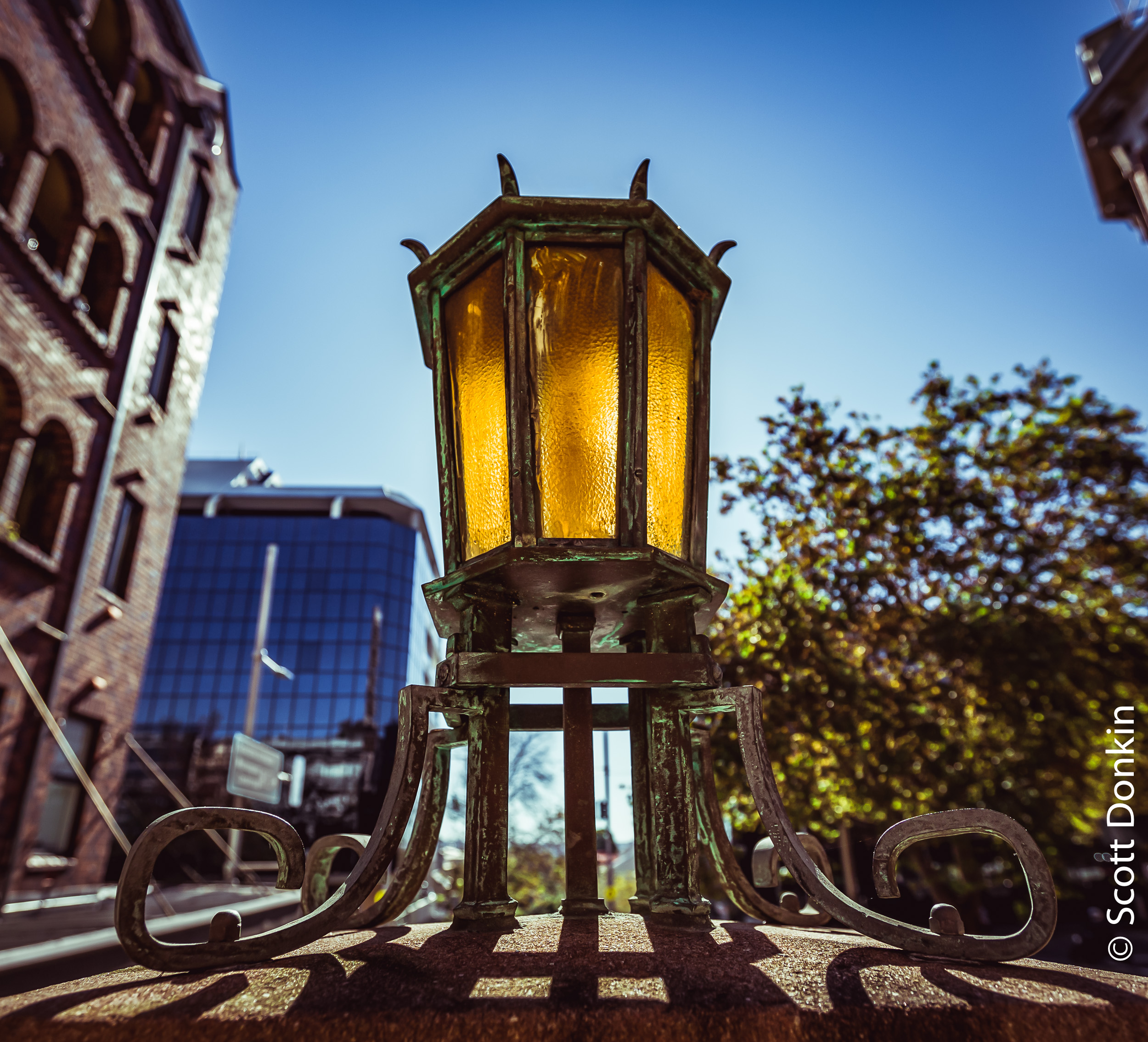 Street lamp. Forbes Street, Darlinghurst, Sydney.