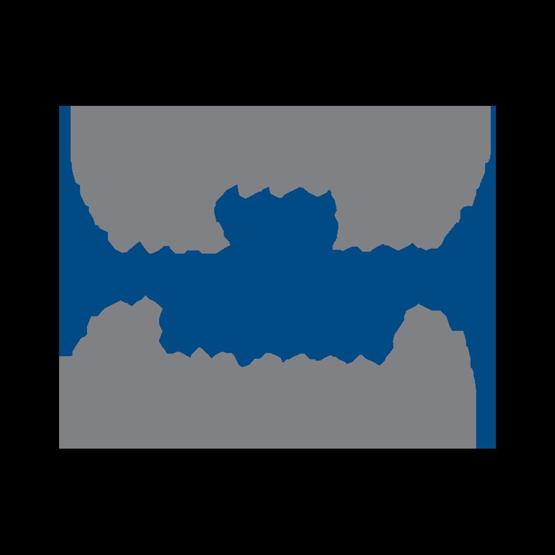 The Texas Women's Summit