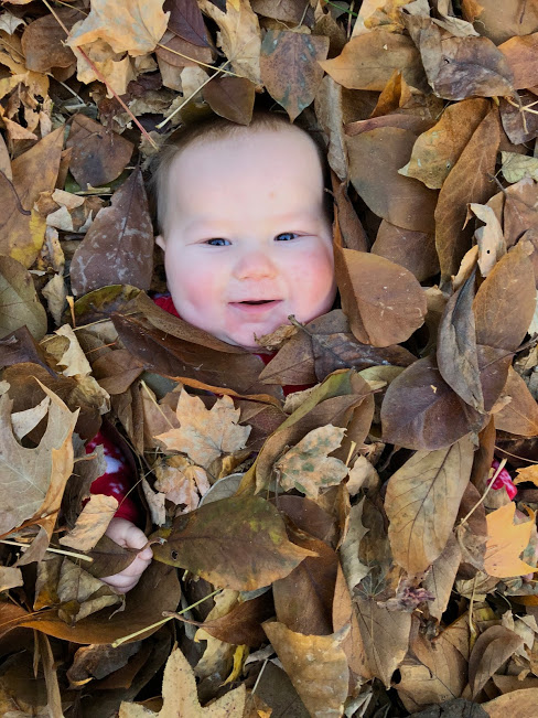 m in leaves.jpg