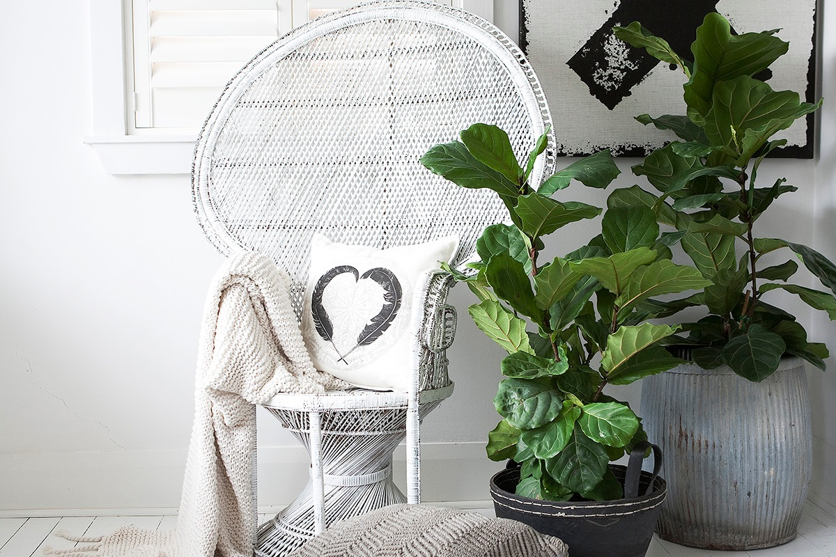 THE WEDDING NEST - A boutique wedding gift registry specialising in unique gifts that are design and style focused, not available on other registries. Our proposition is that a couples' wedding registry should style their home. We have an extensive but well…