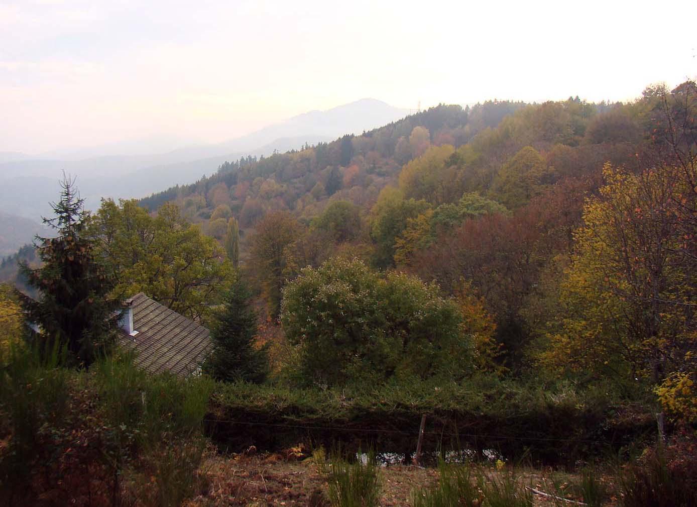 Roof_and_hillside.jpg