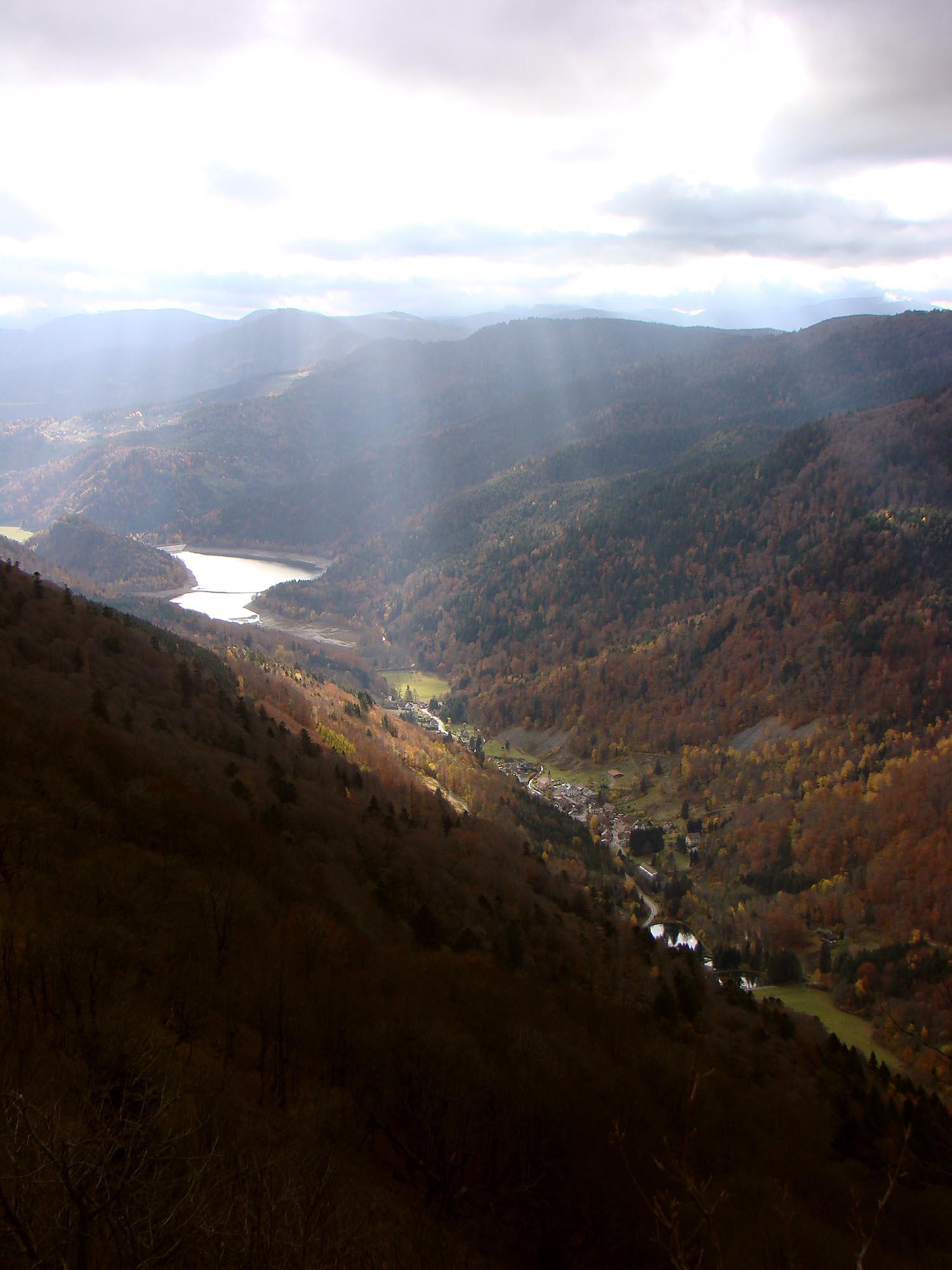 Lake_view.jpg
