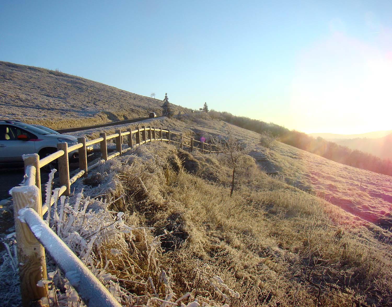 Snow-fences.jpg