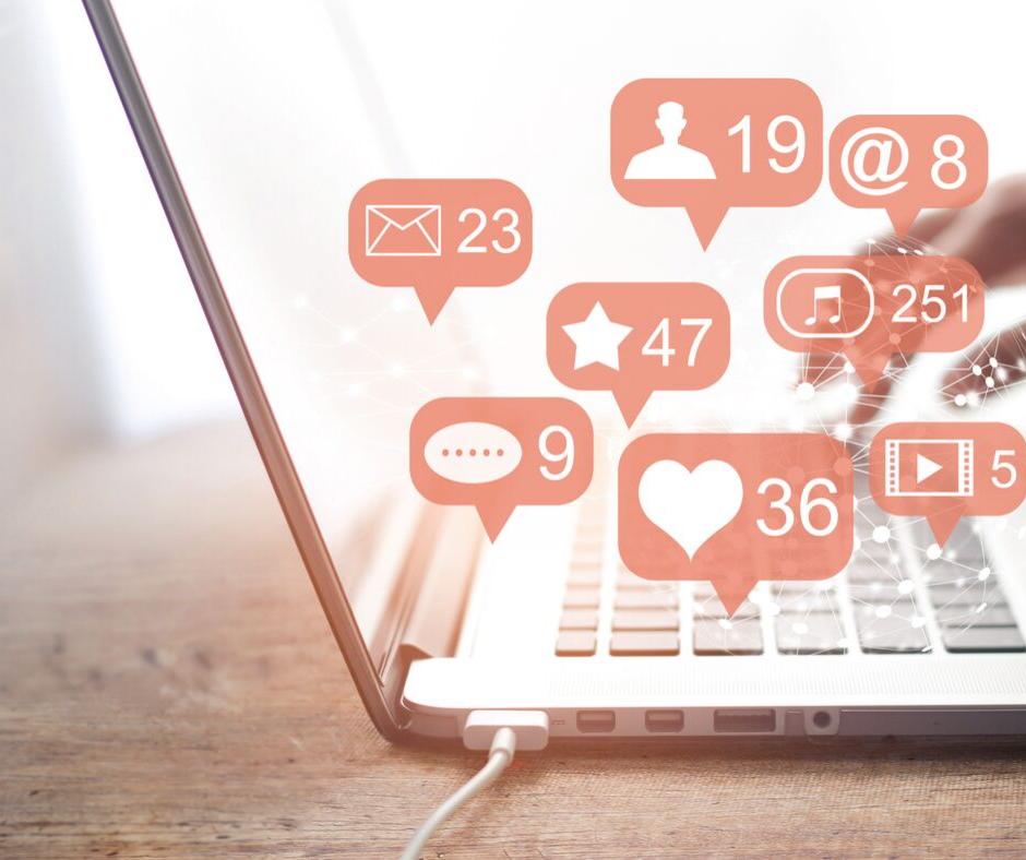 Social Media Management - $315 / per month
