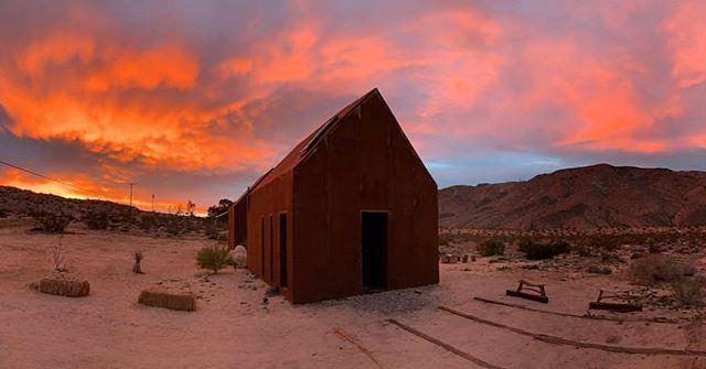 @mattwalkeradventure #FollyFamily #JoshuaTree #Sunset