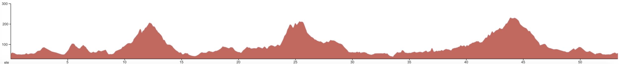 Raglan Loop - Advanced - Elevation