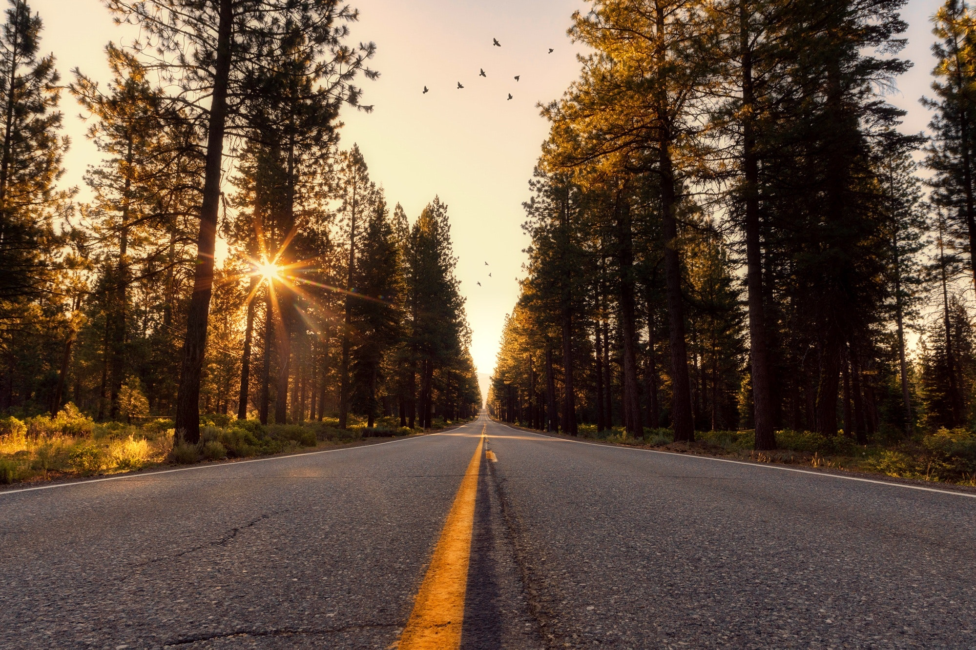 adventure-asphalt-california-533671.jpg