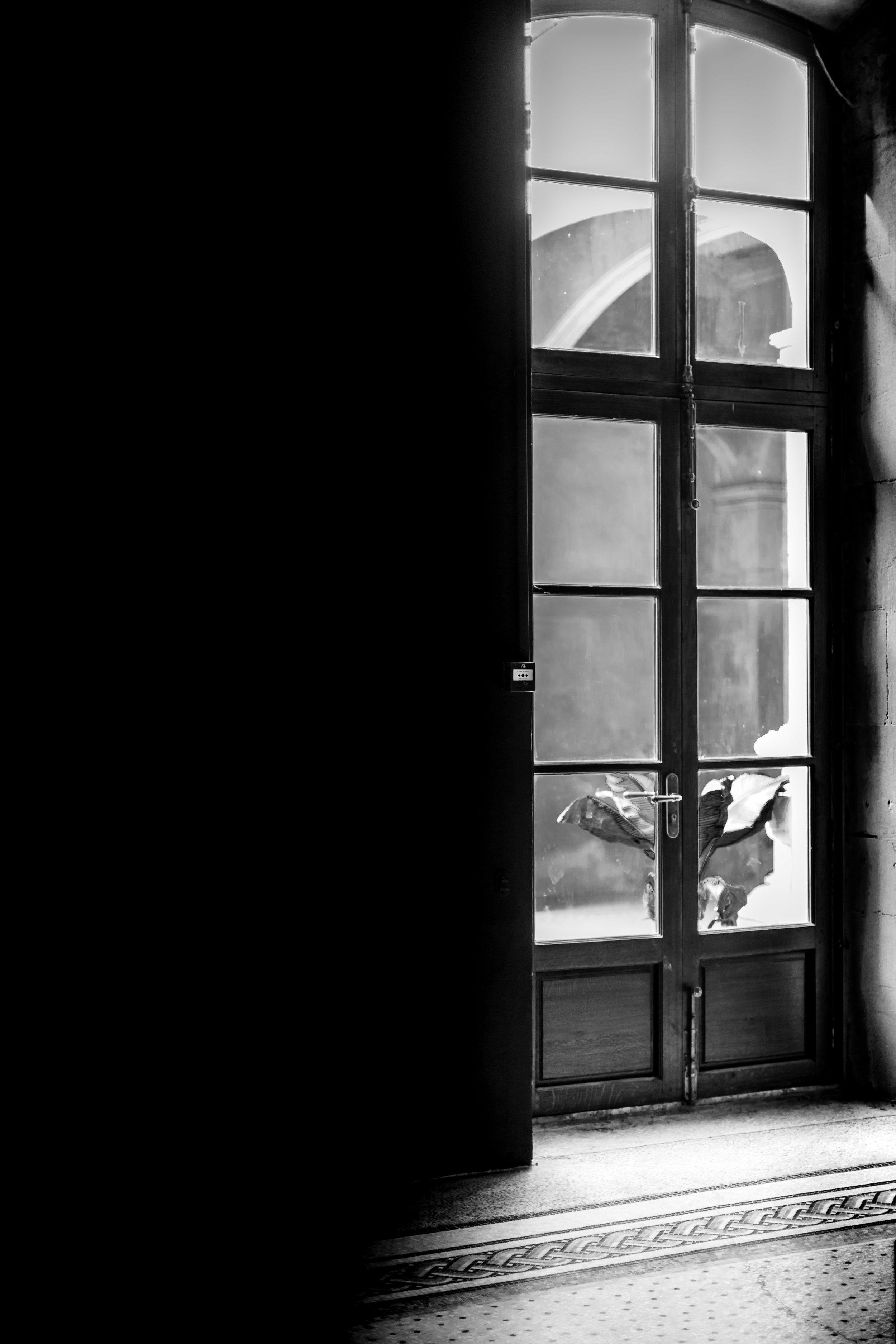 Arles 5.jpg