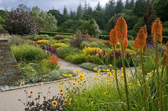 rhs-garden-rosemoor.jpg