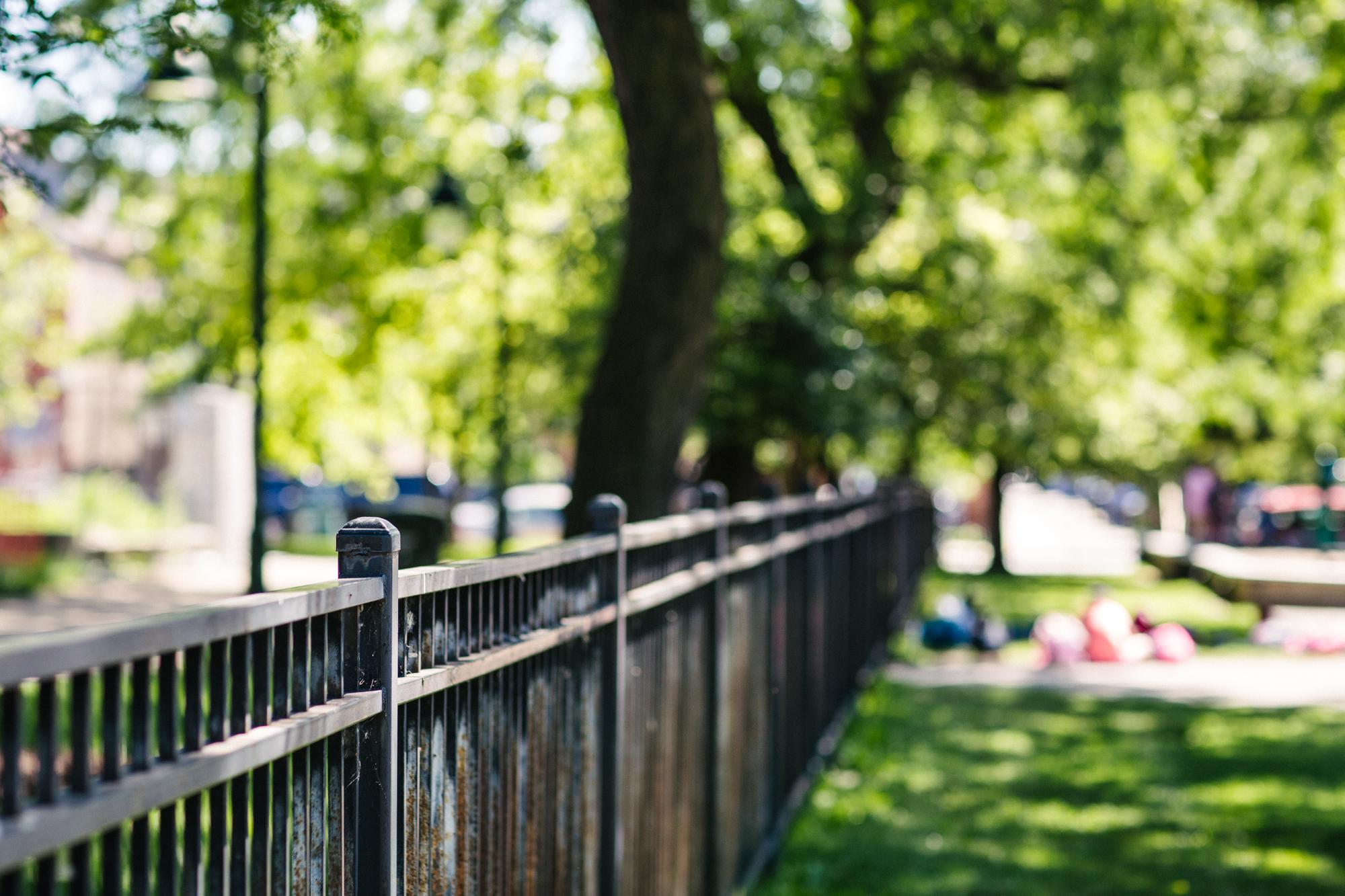 Park Project_Harrison Park_2000px-082.jpg