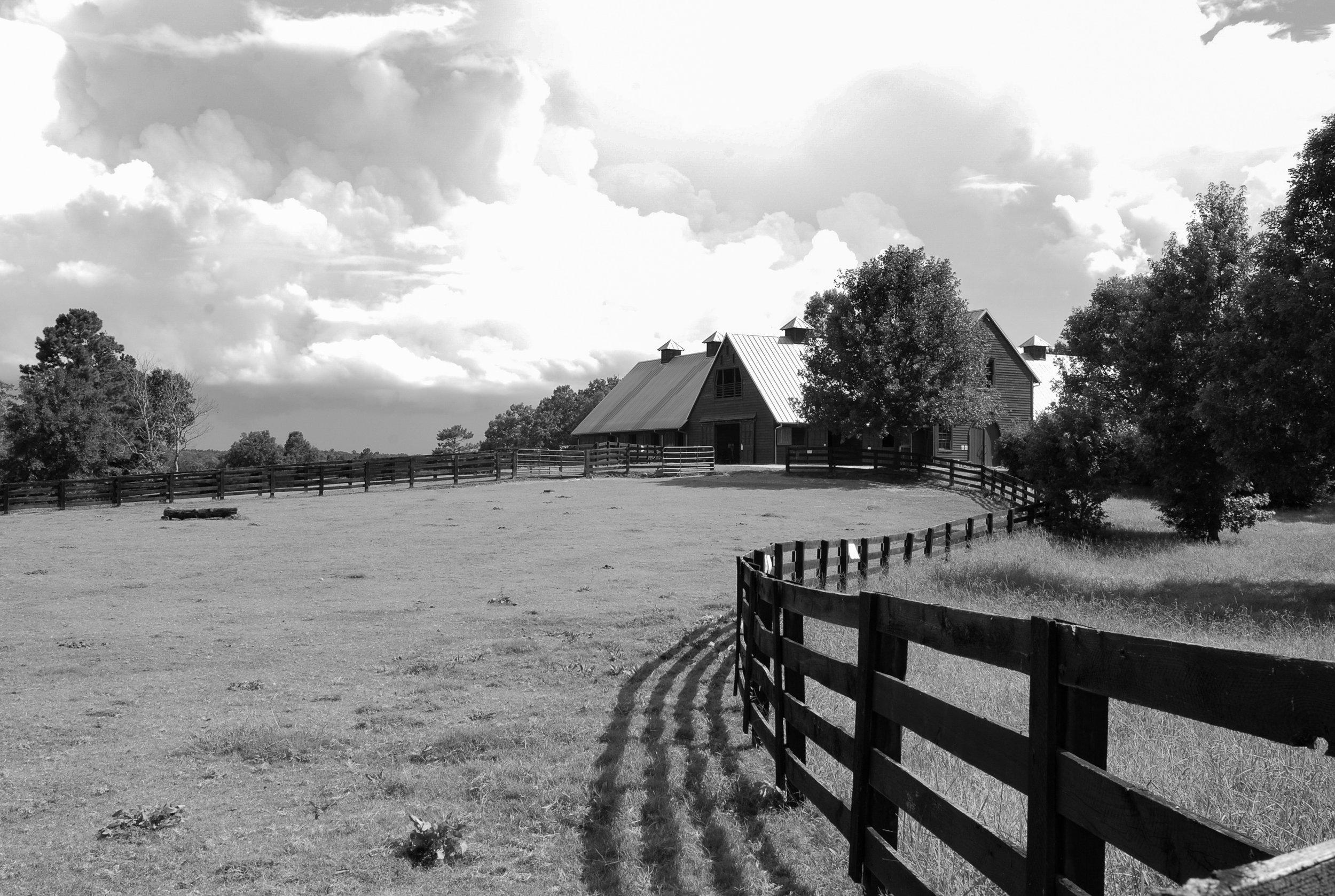 stables 6.jpg